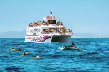 Paseo de los Delfines desde Benalmadena